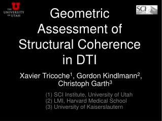 Geometric Assessment of Structural Coherence in DTI