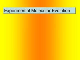 Experimental Molecular Evolution