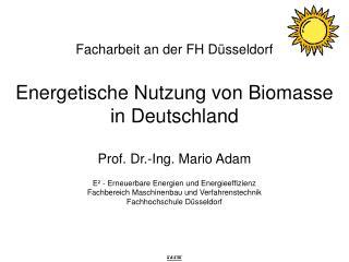 Facharbeit an der FH Düsseldorf Energetische Nutzung von Biomasse in Deutschland