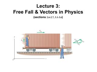 Lecture 3: Free Fall & Vectors in Physics