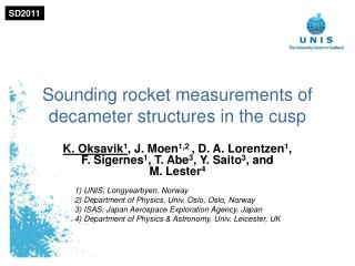 Sounding rocket measurements of decameter structures in the cusp