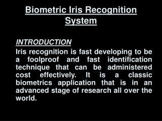 Biometric Iris Recognition System