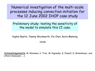 Preliminary study: testing the sensitivity of the model to simulate this CI case.