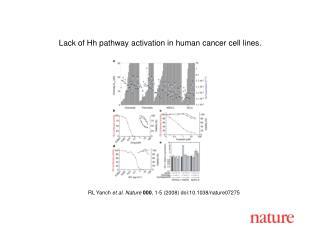 RL Yanch et al. Nature 000 , 1-5 (2008) doi:10.1038/nature072 75