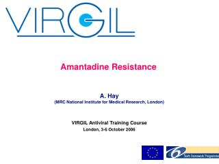 Amantadine Resistance A. Hay (MRC National Institute for Medical Research, London)
