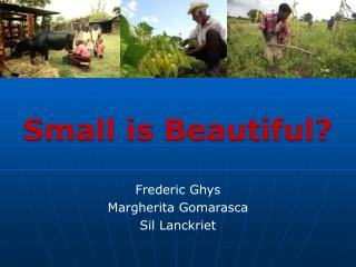 Small  is Beautiful ? Frederic Ghys Margherita  Gomarasca Sil  Lanckriet