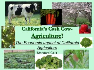California�s Cash Cow- Agriculture !