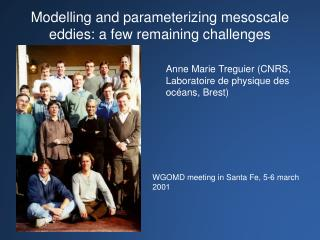 Modelling and parameterizing mesoscale eddies: a few remaining challenges
