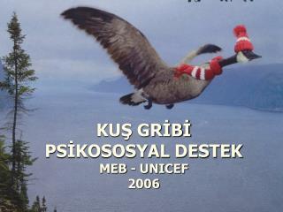 KUŞ GRİBİ  PSİKOSOSYAL DESTEK MEB - UNICEF 2006