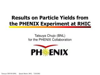 Results on Particle Yields from the PHENIX Experiment at RHIC