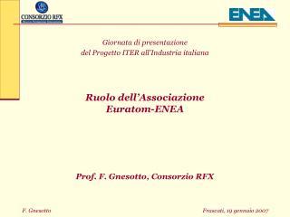 Giornata di presentazione  del Progetto ITER all'Industria italiana