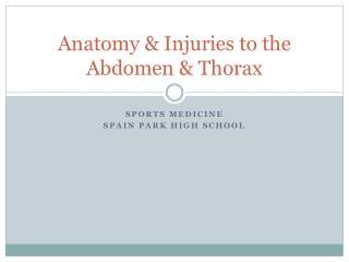 Anatomy & Injuries to the Abdomen & Thorax
