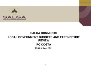 SALGA COMMENTS LOCAL GOVERNMENT BUDGETS AND EXPENDITURE REVIEW PC COGTA  25 October 2011