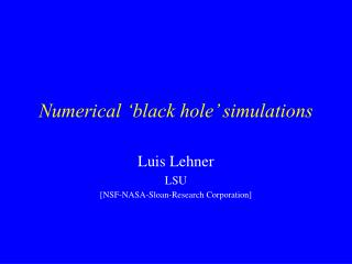 Numerical 'black hole' simulations