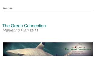 The Green Connection  Marketing Plan 2011