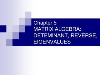 Chapter 5 MATRIX ALGEBRA: DETEMINANT, REVERSE, EIGENVALUES