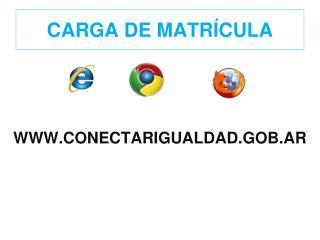CARGA DE MATR CULA