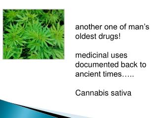 another one of man's oldest drugs! medicinal uses documented back to  ancient times…..
