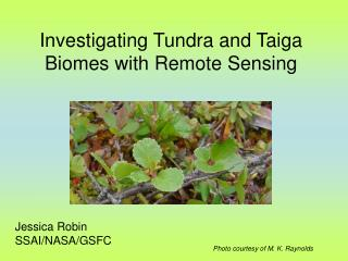 Investigating Tundra and Taiga Biomes with Remote Sensing