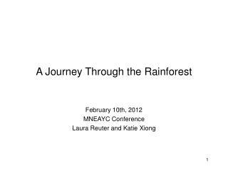 A Journey Through the Rainforest