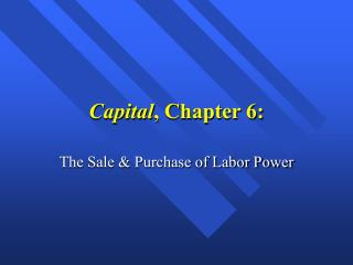 Capital , Chapter 6: