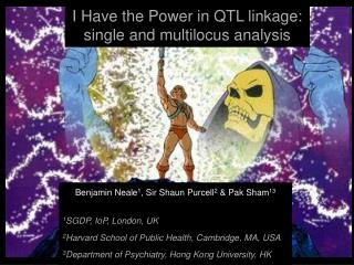 I Have the Power in QTL linkage:  single and multilocus analysis