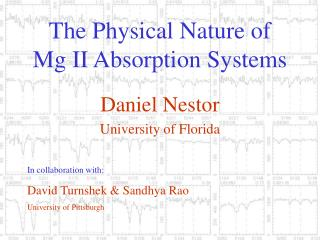 The Physical Nature of Mg II Absorption Systems
