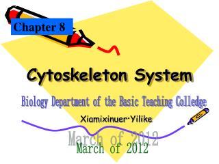 Cytoskeleton System