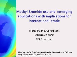 Methyl Bromide use and  emerging applications with implications for international  trade
