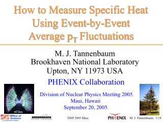 How to Measure Specific Heat Using Event-by-Event           Average p T  Fluctuations