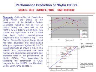 Performance Prediction of Nb 3 Sn CICC's Mark D. Bird   (NHMFL-FSU), DMR 0603042