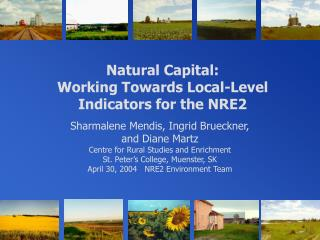 Natural Capital:  Working Towards Local-Level Indicators for the NRE2