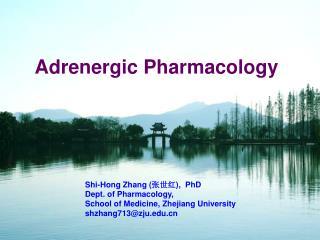 Adrenergic Pharmacology