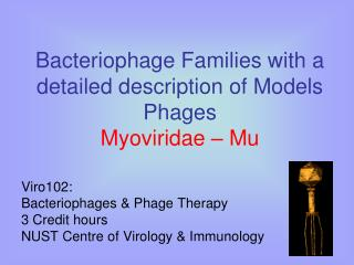 Bacteriophage Families with a detailed description of Models Phages Myoviridae – Mu