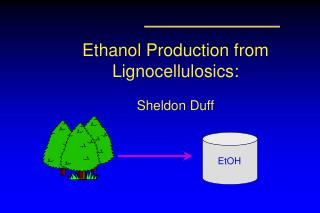 Ethanol Production from Lignocellulosics: Sheldon Duff