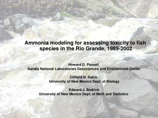 Ammonia modeling for assessing toxicity to fish species in the Rio Grande, 1989-2002
