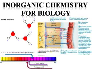 Inorganic Chemistry  For Biology