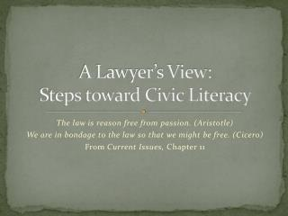 A Lawyer's View:  Steps toward Civic Literacy
