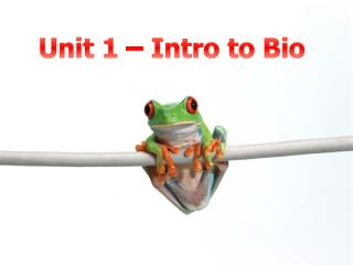 Unit 1 – Intro to Bio