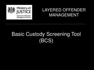 Basic Custody Screening Tool (BCS)