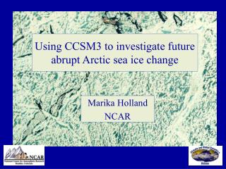 Using CCSM3 to investigate future abrupt Arctic sea ice change