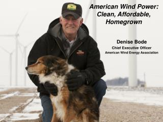 Denise Bode Chief Executive Officer American Wind Energy Association