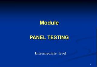 Module PANEL TESTING