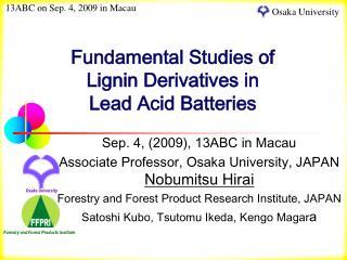 Fundamental Studies of  Lignin Derivatives in  Lead Acid Batteries