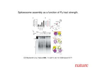 CD Mackereth  et al. Nature 000 , 1-4 (2011) doi:10.1038/nature10171