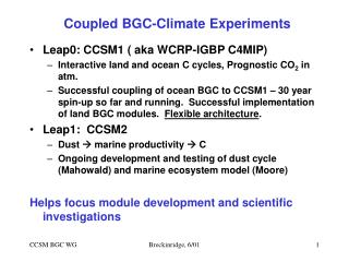 Coupled BGC-Climate Experiments