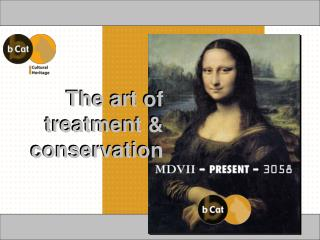 The art of  treatment & conservation