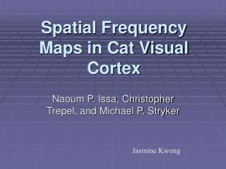 Spatial Frequency Maps in Cat Visual Cortex