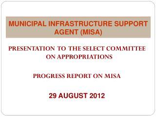 MUNICIPAL INFRASTRUCTURE SUPPORT AGENT (MISA)