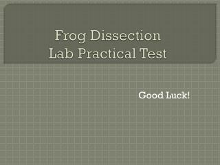 Frog Dissection Lab Practical Test